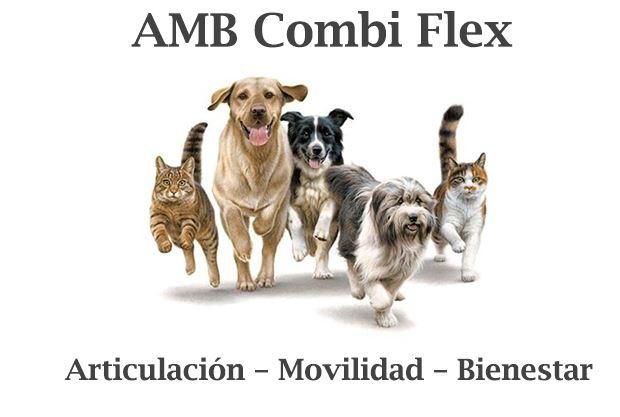 AMB Combi Flex
